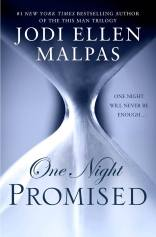 one night promised cover