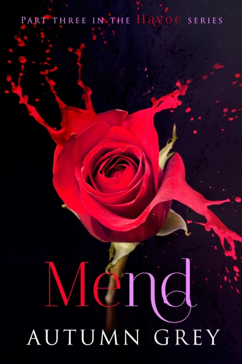 mend cover