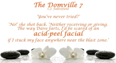 the domville 7 Teaser 1