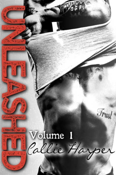 Unleashed Vol 1 Ebook Cover