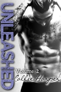 Unleashed Volume 2 Ebook Cover