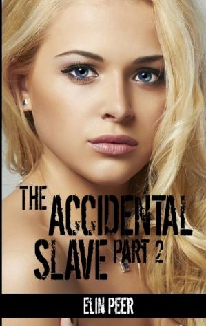 Accidental Slave 2