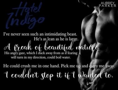 hotel-indigo-teaser-3