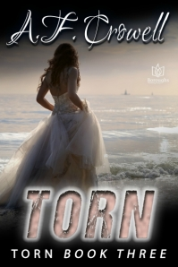 torn-ebook-cover