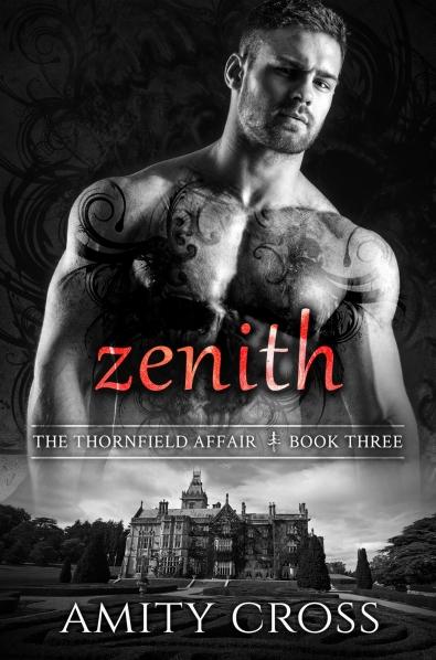 zenith-ebook-cover
